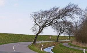 viento en la carretera